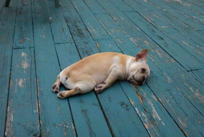 Zmęczenie i brak koncentracji