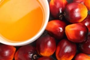 Czerwony olej palmowy