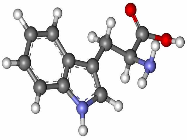 Tryptofan – z czym to się je?